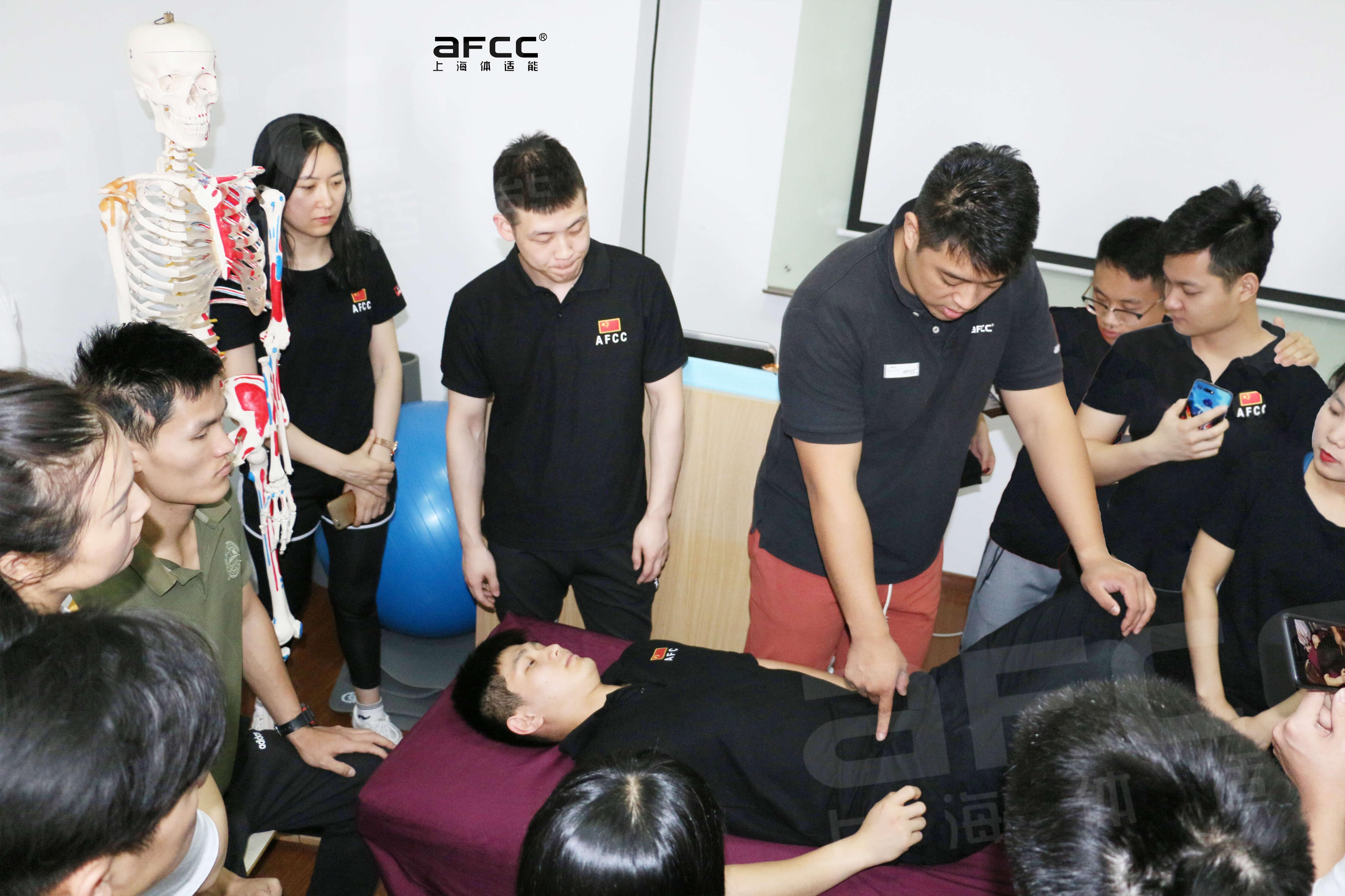 腰背肌肉群拉伸评估